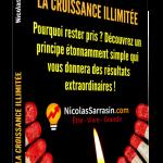La croissance illimitée: Découvrez un principe étonnamment simple qui vous donnera des résultats extraordinaires! Livre de Nicolas Sarrasin