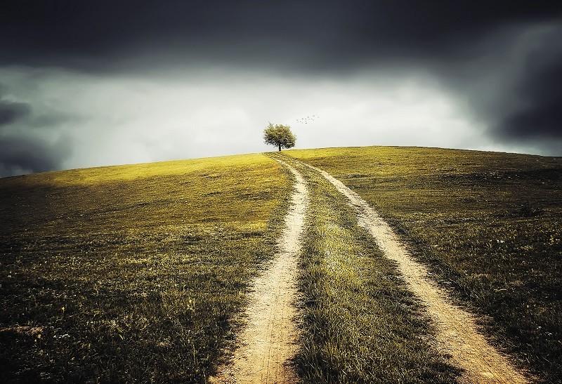 Quelles sont les premières étapes de la réalisation de soi ? - NicolasSarrasin.com