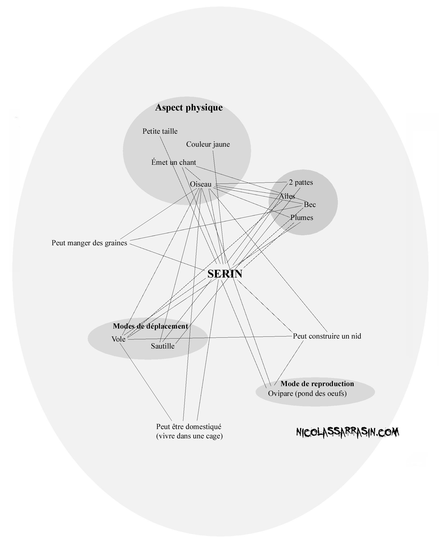 Une représentation mentale du concept de serin - NicolasSarrasin.com
