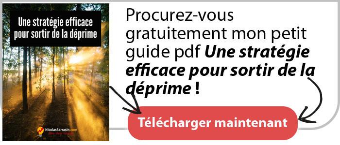 """Guide pdf """"Une stratégie efficace pour sortir de la déprime"""" de Nicolas Sarrasin"""