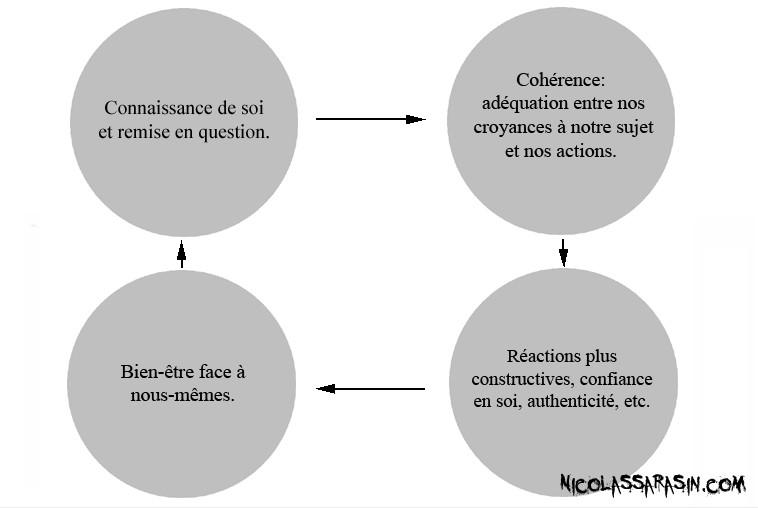 Le processus de renforcement positif de l'identité - NicolasSarrasin.com